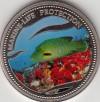 Palau 1$ Farbmünze 2003  Fisch