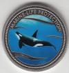 Palau 1$ Farbmünze 2003 Killerwal